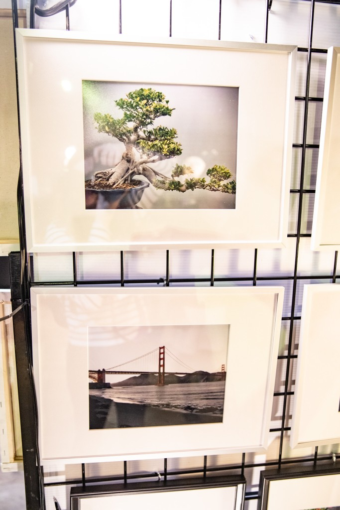 2 of my framed photographs hanging on my wall. one is a bonsai tree and the other is of golden gate bridge.