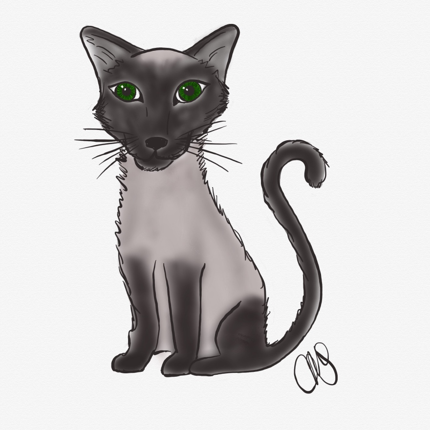 pen and pencil sketch of a siamese cat that is black and white except for the eyes which are green
