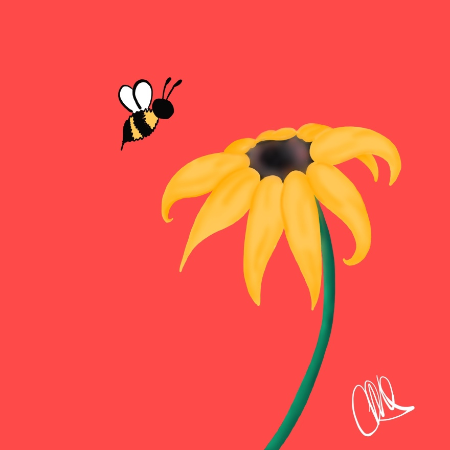 illustration of a black eyed susan with a bee approaching