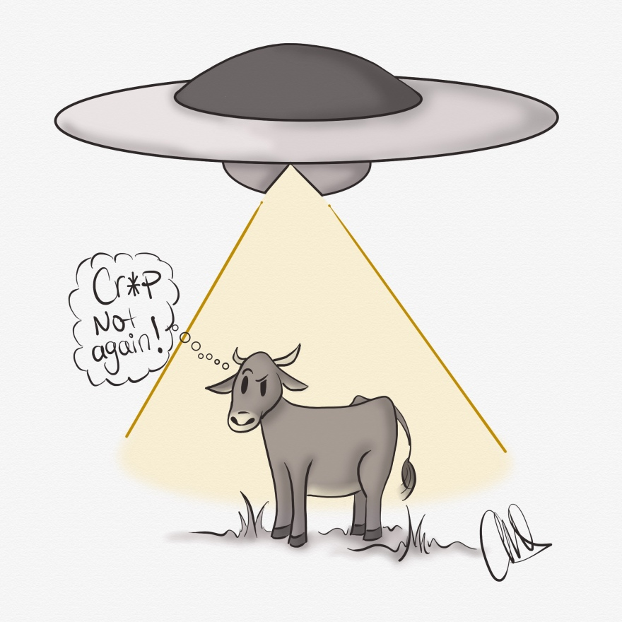 """Black and white image of a cow in a field with a flying saucer floating over him and soft yellow light coming down over the cow. Cow is thinking """"cr*p not again!"""""""